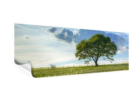 Poster Panorama Frühlingsbaum