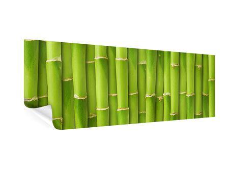 Poster Panorama Bambuswand