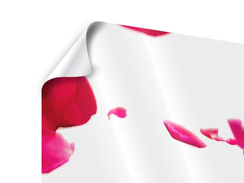 Poster 3-teilig Für mich soll`s rote Rosen regnen