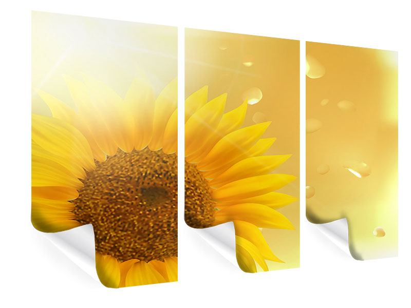 Poster 3-teilig Sonnenblume im Morgentau