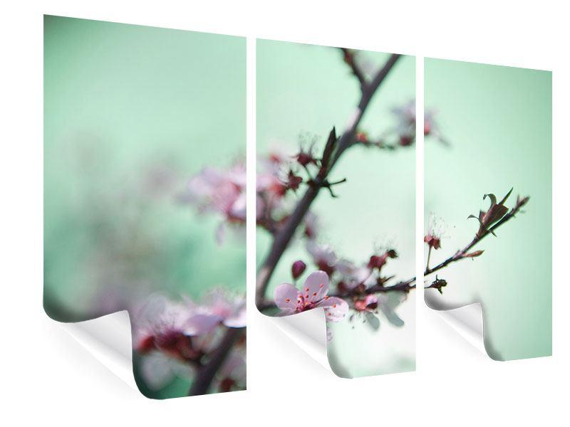 Poster 3-teilig Die japanische Kirschblüte