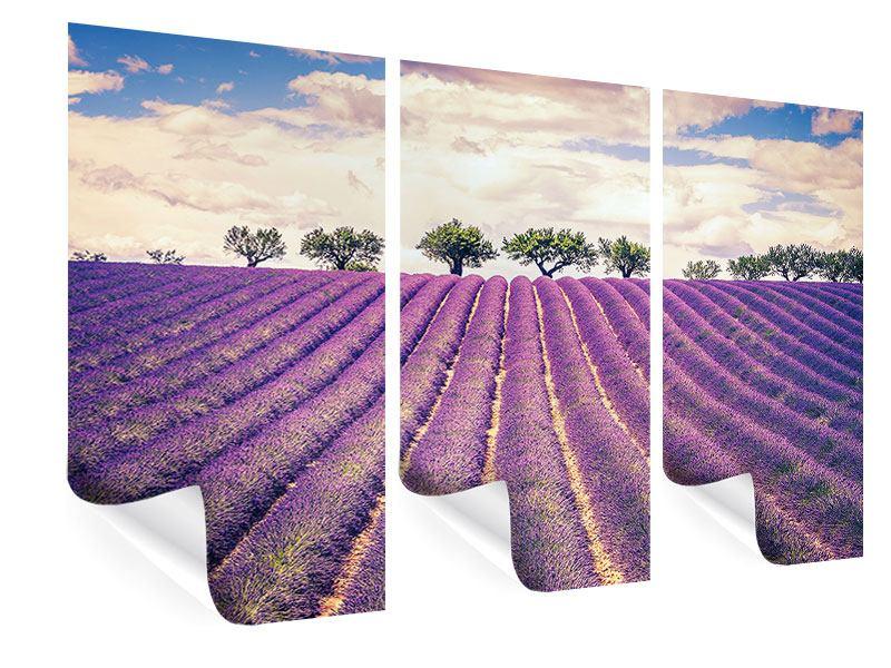Poster 3-teilig Das Lavendelfeld