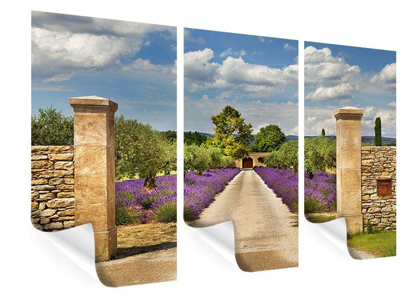 Poster 3-teilig Lavendel-Garten