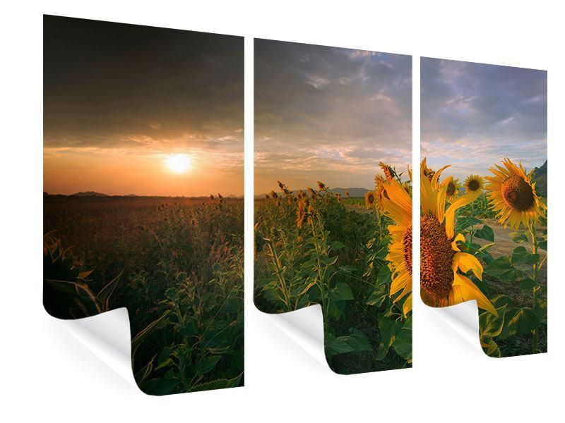 Poster 3-teilig Sonnenblumen im Lichtspiel
