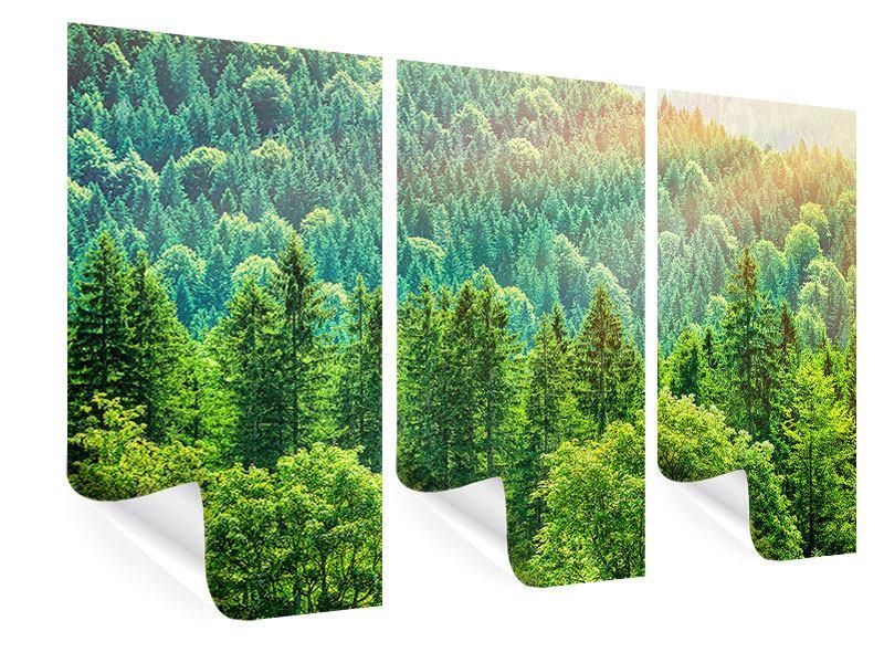 Poster 3-teilig Der Waldhügel
