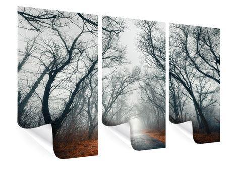Poster 3-teilig Mysteriöse Stimmung im Wald