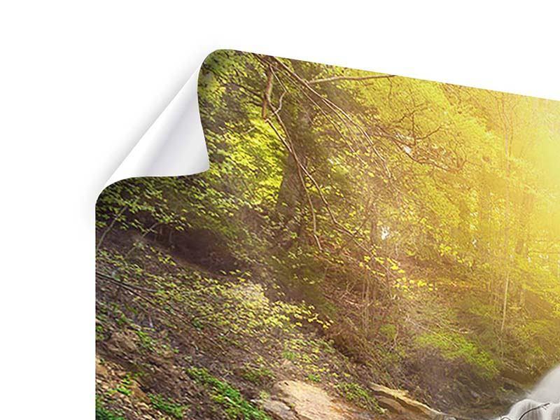 Poster 3-teilig Naturschönheit