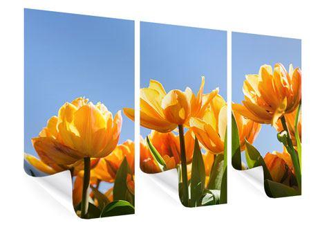 Poster 3-teilig Märchenhafte Tulpen