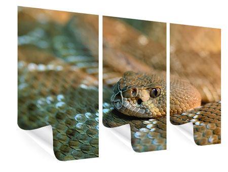 Poster 3-teilig Viper