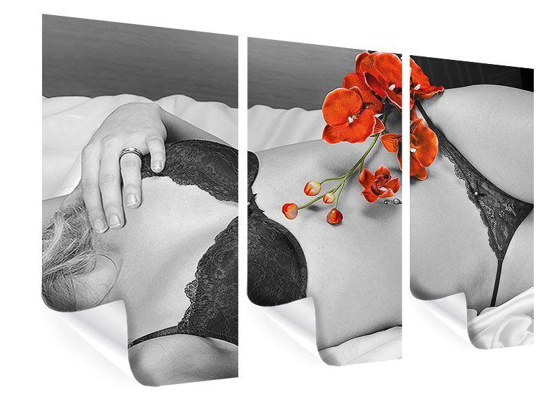 Poster 3-teilig Dessous-Schönheit