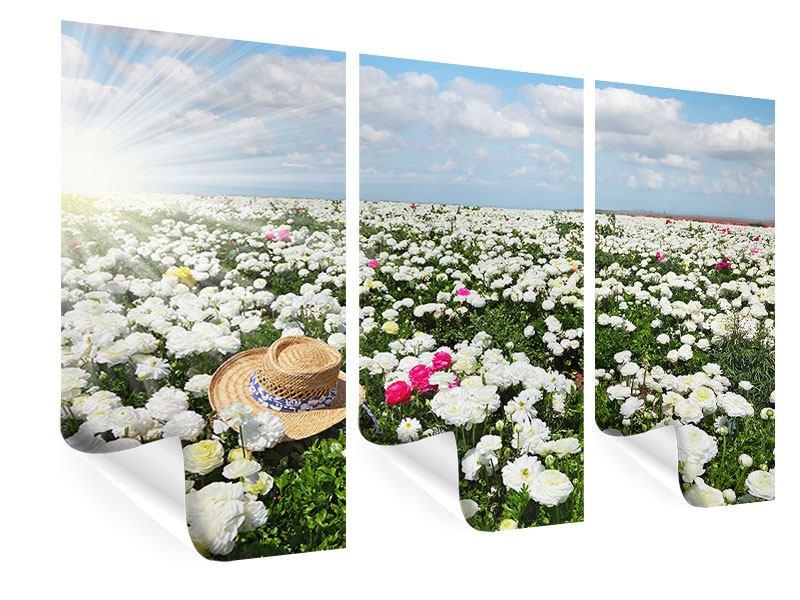 Poster 3-teilig Die Frühlingsblumenwiese