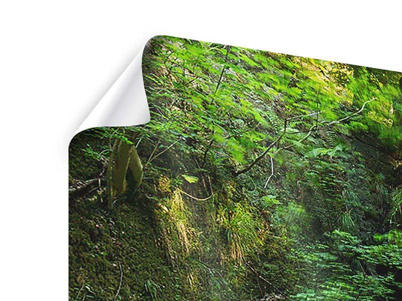 Poster 3-teilig Fallendes Wasser
