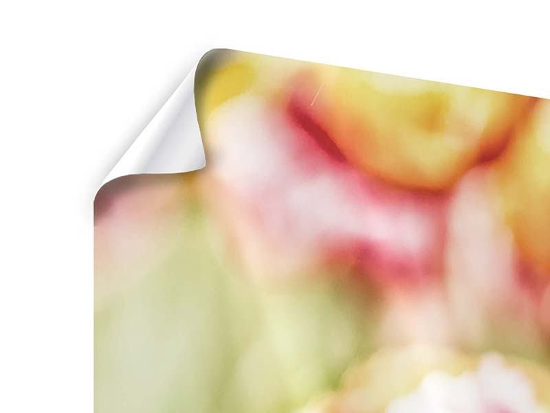 Poster 3-teilig Die Schönheit der Tulpe