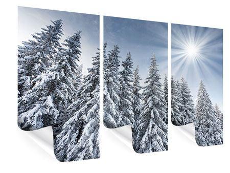 Poster 3-teilig Wintertannen