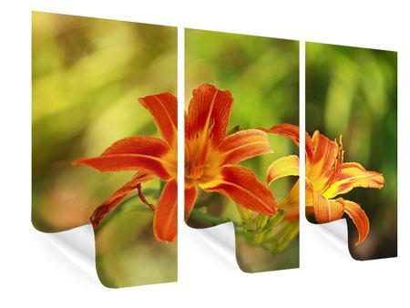 Poster 3-teilig Natural Lilien