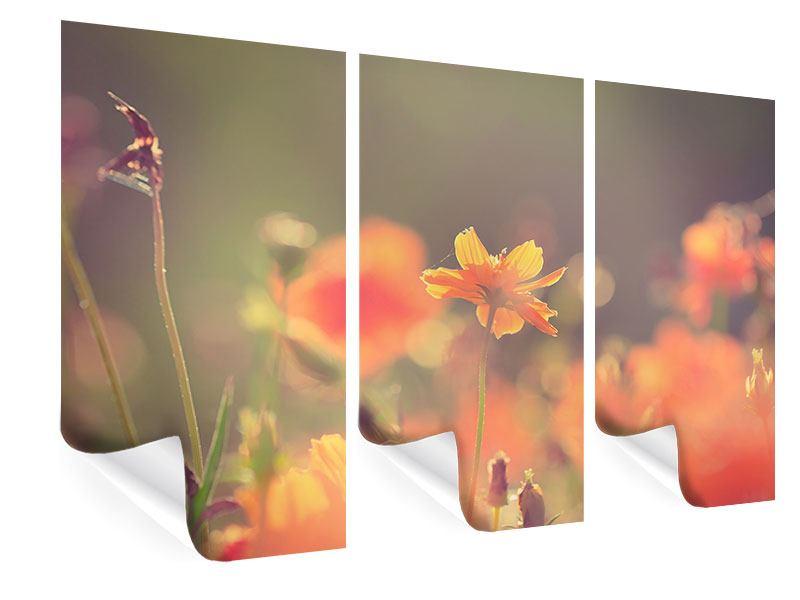 Poster 3-teilig Blütenpracht