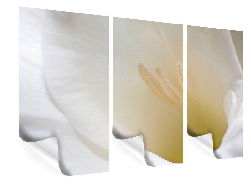 Poster 3-teilig In einer Blüte