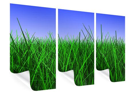 Poster 3-teilig Im Gras