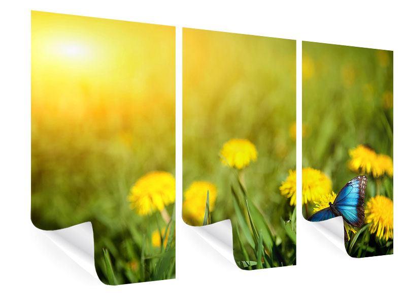 Poster 3-teilig Der Löwenzahn und der Schmetterling