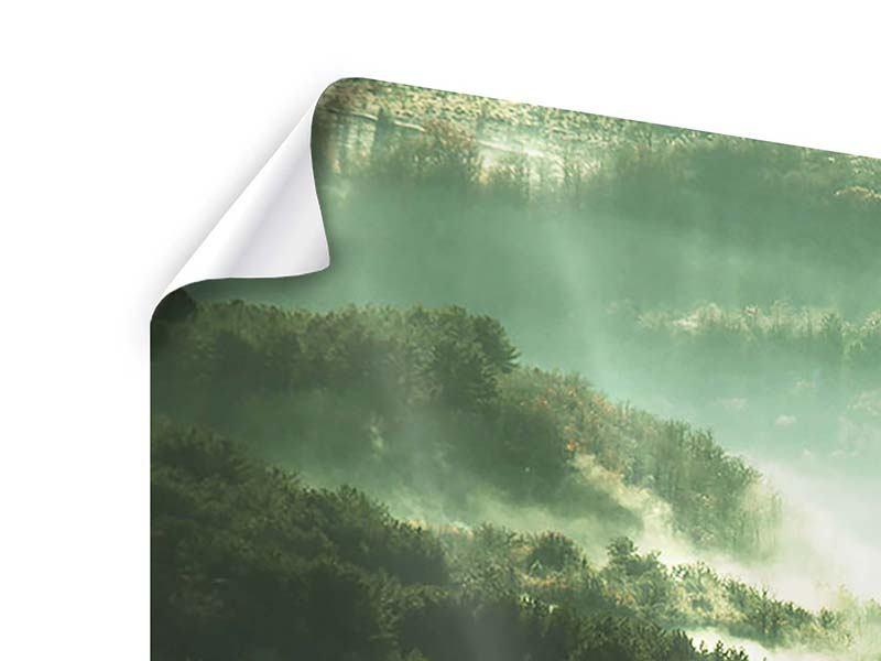 Poster 3-teilig Über den Wäldern