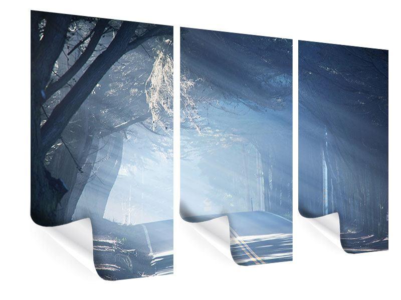 Poster 3-teilig Lichtdurchflutete Baumallee