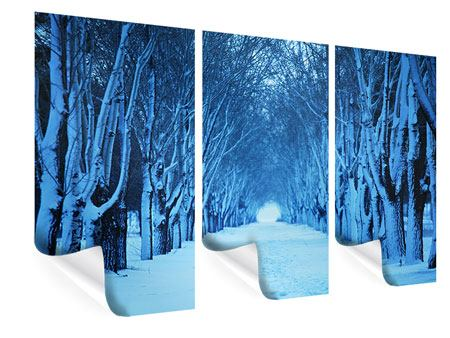 Poster 3-teilig Winterbäume