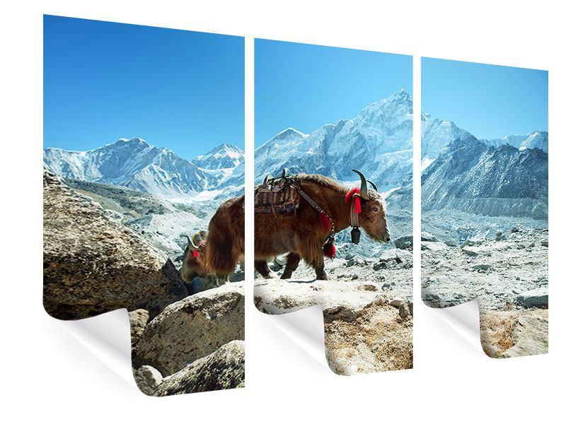 Poster 3-teilig Das Himalaya-Gebirge