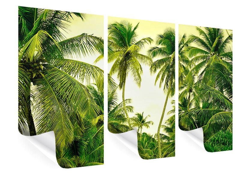 Poster 3-teilig Reif für die Insel