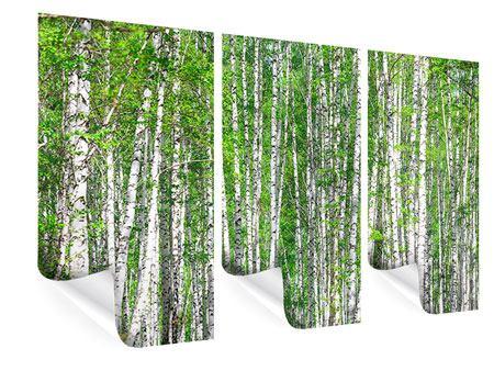 Poster 3-teilig Der Birkenwald