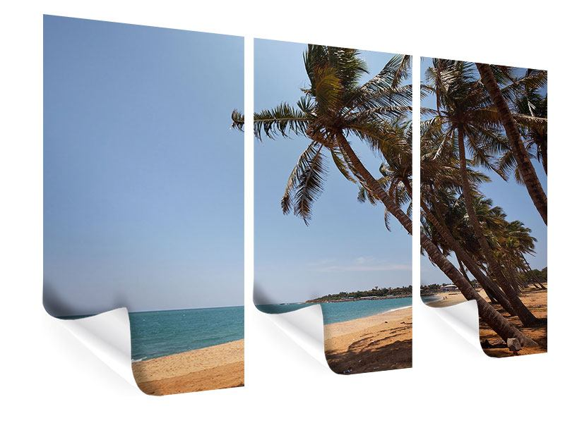Poster 3-teilig Palmblätter