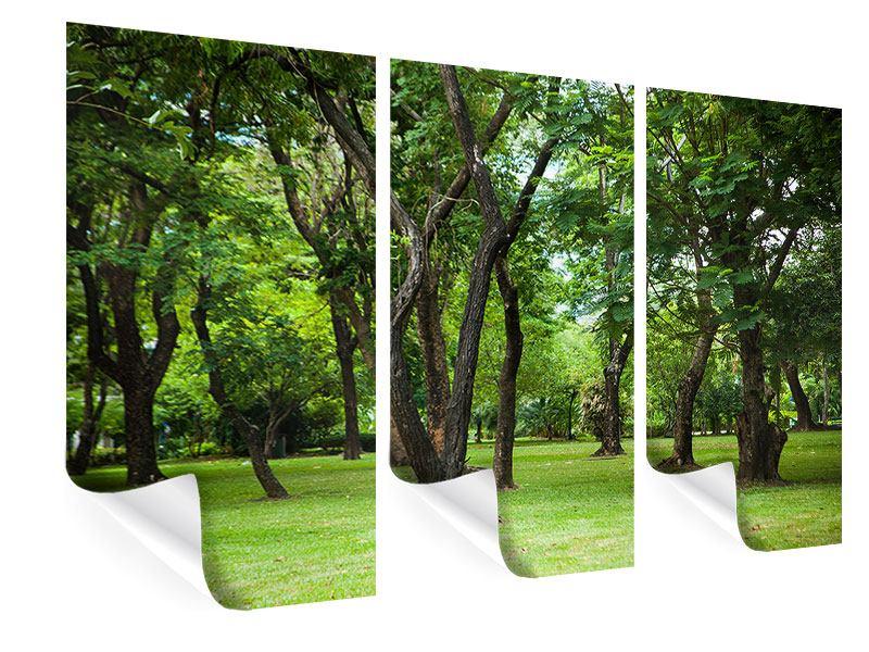 Poster 3-teilig Kirschbaum-Garten