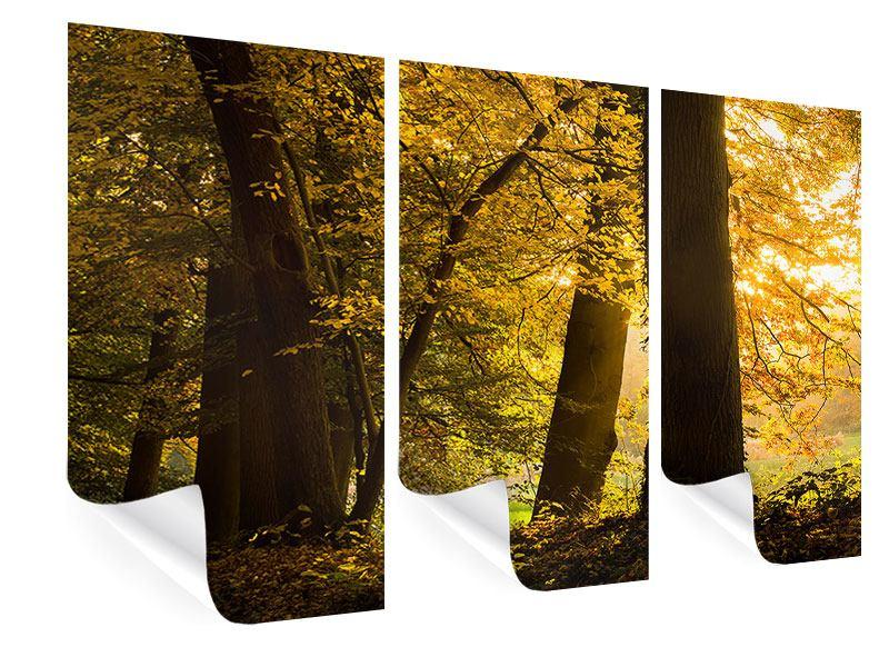Poster 3-teilig Herbstlaub