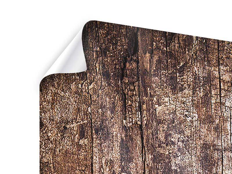 Poster 3-teilig Retro-Holz