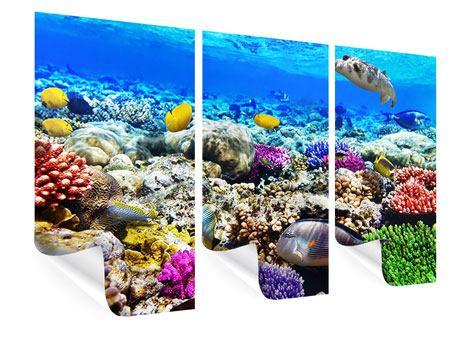 Poster 3-teilig Fischaquarium