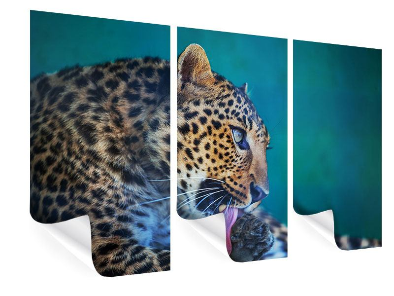 Poster 3-teilig Leopard XL