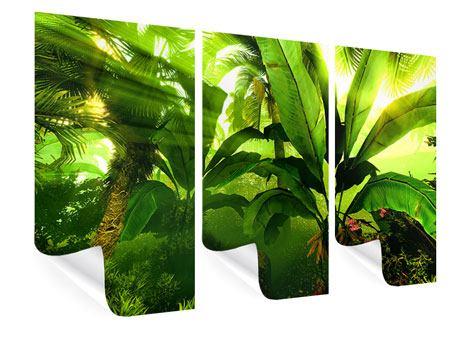Poster 3-teilig Sonnenaufgang im Regenwald