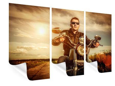Poster 3-teilig Der Coole Biker