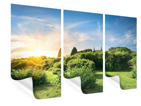 Poster 3-teilig Sonnenaufgang im Park