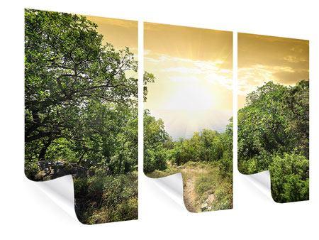 Poster 3-teilig Am Ende des Waldes