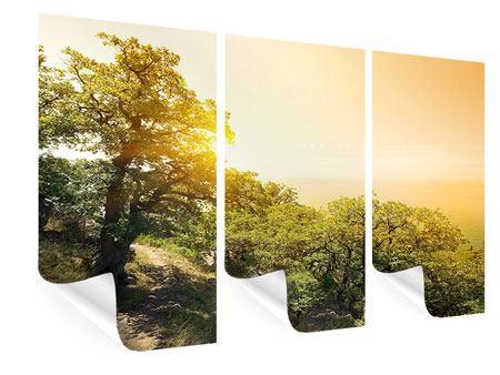 Poster 3-teilig Sonnenuntergang in der Natur