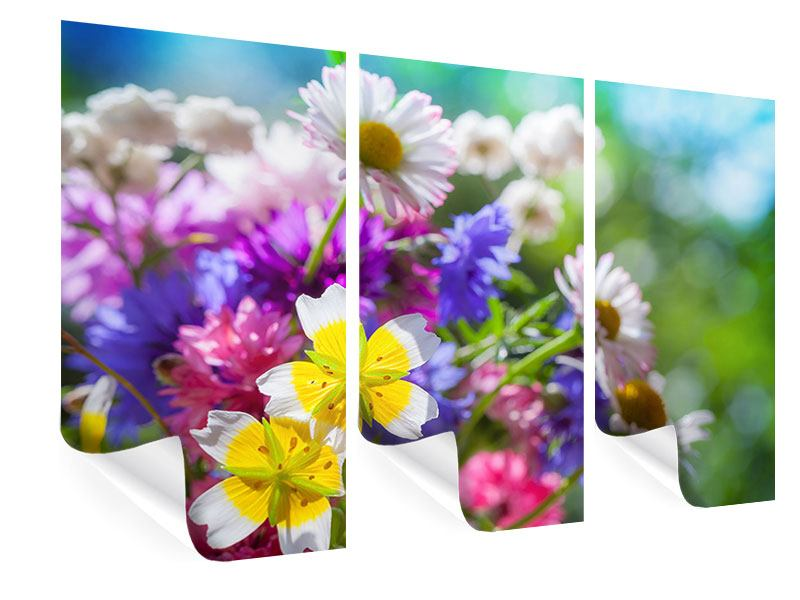 Poster 3-teilig XXL Gartenblumen