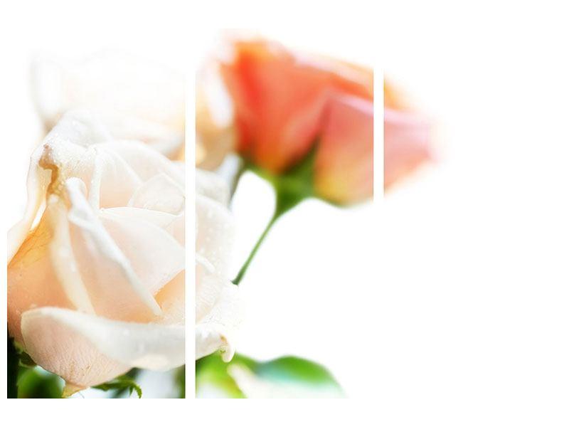 Poster 3-teilig Rosenperspektive