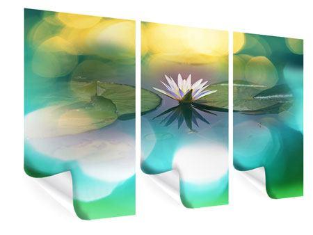 Poster 3-teilig Lotus-Spiegelung