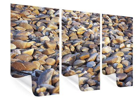 Poster 3-teilig Strandsteine