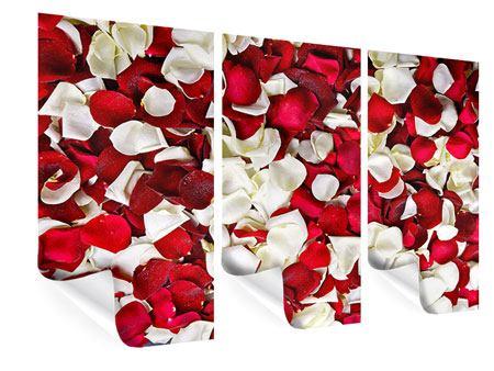 rosen poster seite 4. Black Bedroom Furniture Sets. Home Design Ideas