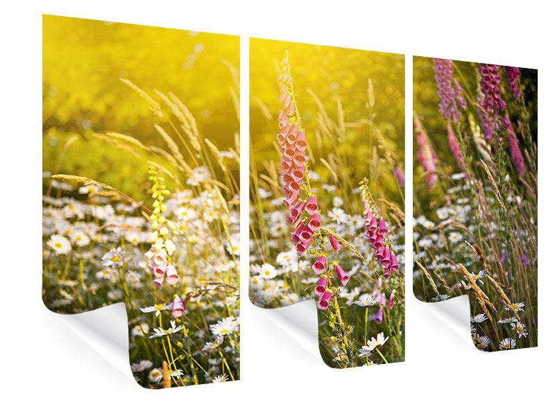 Poster 3-teilig Sommerliche Blumenwiese