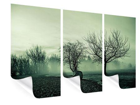 Poster 3-teilig Der Auwald im Nebel
