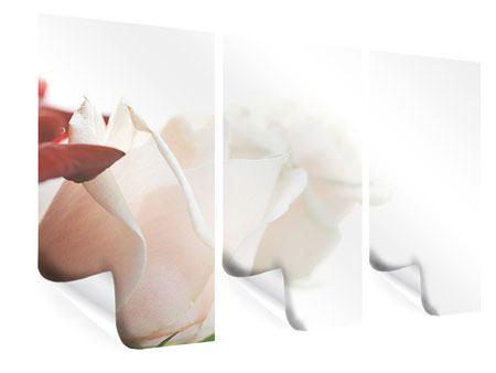 Poster 3-teilig Herrliche Rosen