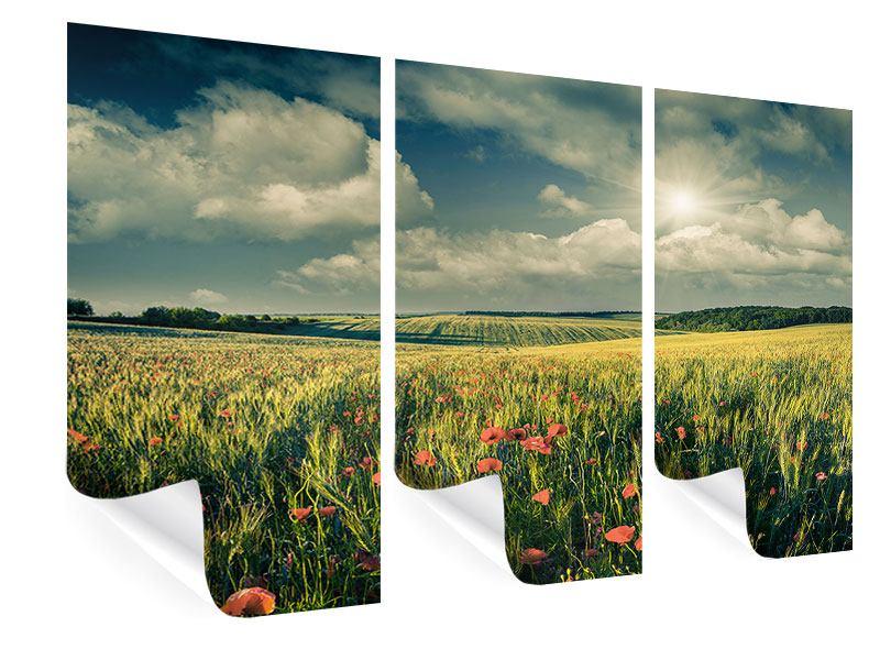 Poster 3-teilig Der Mohn im Weizenfeld