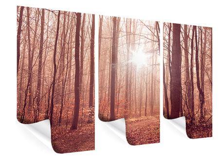 Poster 3-teilig Sonnenuntergang im Herbstwald